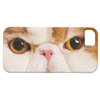 国内猫。 さらさの道化師のペルシャ語。 終わり iPhone SE/5/5s ケース