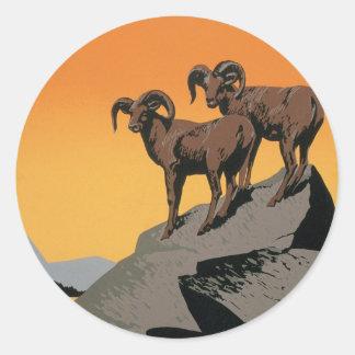 国立公園ジャムの野性生物 ラウンドシール