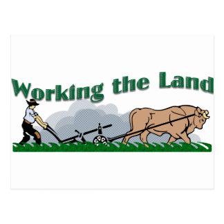 土地を働かせること ポストカード