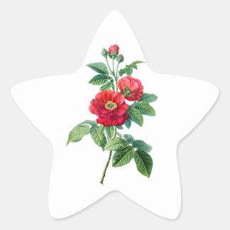地域の赤いバラ 星シール