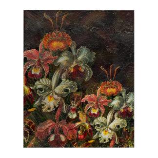 地球の調子のヴィンテージの花 アクリルウォールアート