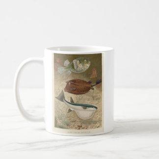 地球の魚及び貴重品箱の魚の本屋の広告宣伝 コーヒーマグカップ