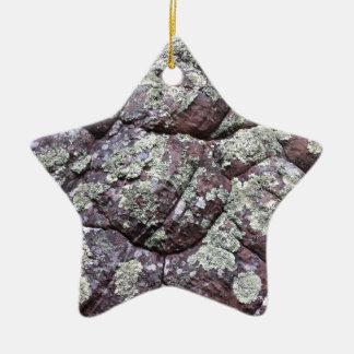 地衣のコケが付いているBouldered石 セラミックオーナメント