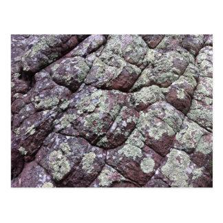 地衣のコケが付いているBouldered石 ポストカード