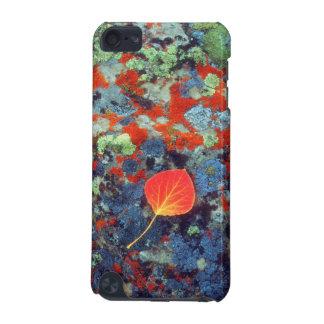 地衣の《植物》アスペンの葉は石を覆いました iPod TOUCH 5G ケース