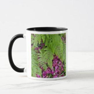 地面のピンクの花の花びらを搭載する森林シダ マグカップ