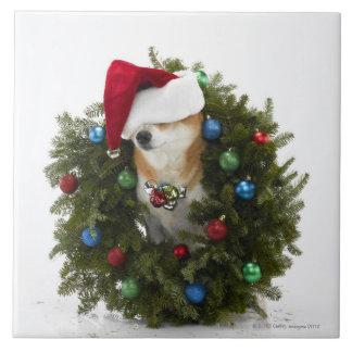 坐るサンタの帽子を身に着けている柴犬犬 タイル