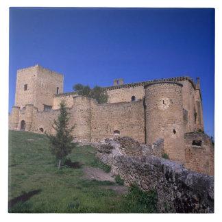 城Pedrazaのカスティリャレオン、スペイン タイル