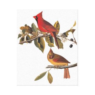 基本的なGrosbeakの鳥のAudubonのヴィンテージの芸術 キャンバスプリント
