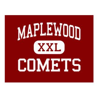 基本Maplewood -彗星- -硫黄 ポストカード