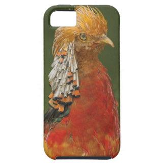 堅い金か中国のなキジのiPhone 5の穹窖 iPhone SE/5/5s ケース