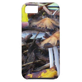 堅い雨林の床4の穹窖のきのこ iPhone SE/5/5s ケース