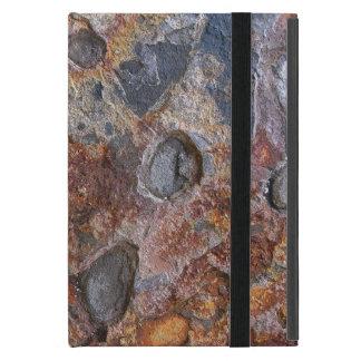 堆積岩の表面 iPad MINI ケース