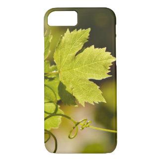 場合: 地中海のなブドウつる植物 iPhone 8/7ケース