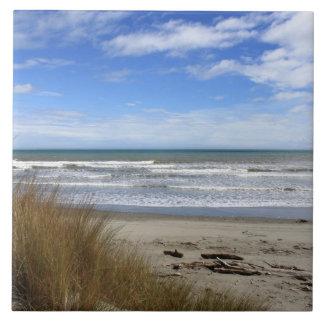 場面、砂、海および青空を浜に引き上げて下さい タイル