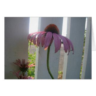 塀が付いている花 カード