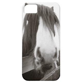 塀に凝視している馬 iPhone SE/5/5s ケース