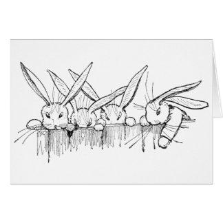 塀に凝視するウサギ カード