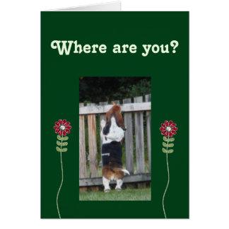 塀に見るおもしろいなバースデー・カードw/Basset カード