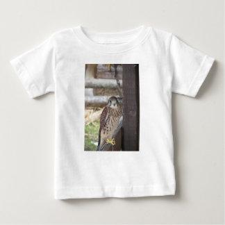 塀のポストでとまるKestrel ベビーTシャツ