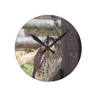 塀のポストでとまるKestrel ラウンド壁時計