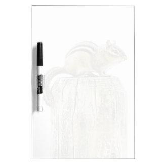 塀のポストのシマリス ホワイトボード