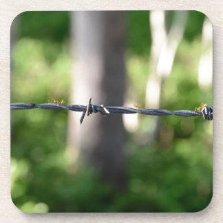 塀の繊維田園クイーンズランドオーストラリア コースター