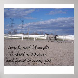 塀、美しいおよびStreに沿う灰色の馬のランニング… ポスター