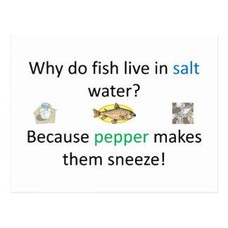 塩およびコショウの冗談 ポストカード