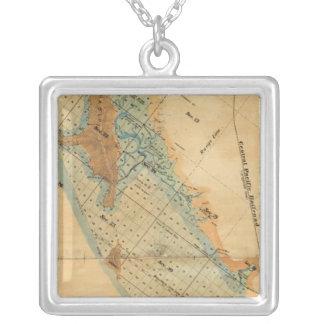 塩性湿地および潮土地の地図 シルバープレートネックレス