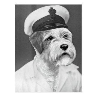 塩辛い海犬のSealyhamの船員のギフト ポストカード