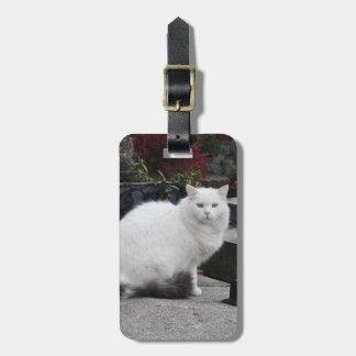 墓の美しく白い猫 ラゲッジタグ