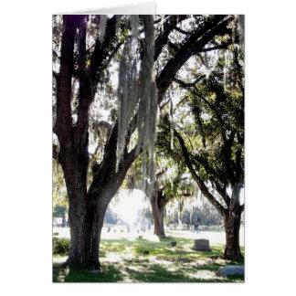 墓地のカシのカードおよび封筒 カード