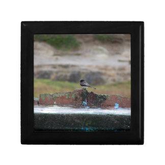 壁の鳥 ギフトボックス
