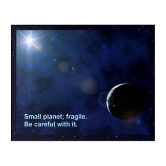 壊れやすい惑星 アクリルウォールアート