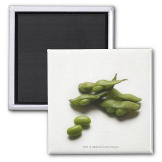 壊れるエンドウ豆の鞘を持つ多数の緑のedamameの豆 マグネット