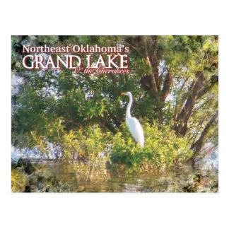 壮大な湖のオクラホマの郵便はがきの白鷺 ポストカード