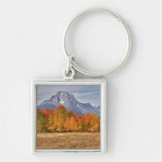 壮大なTeton NP、山Moranおよび《植物》アスペンの木 キーホルダー