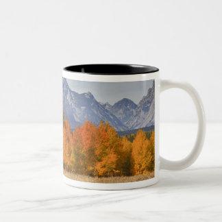 壮大なTeton NP、山Moranおよび《植物》アスペンの木 ツートーンマグカップ