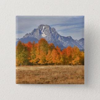 壮大なTeton NP、山Moranおよび《植物》アスペンの木 5.1cm 正方形バッジ
