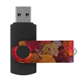 壮麗なかえでの葉 USBフラッシュドライブ
