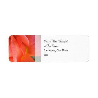 夏のばら色の結婚式 返信用宛名ラベル