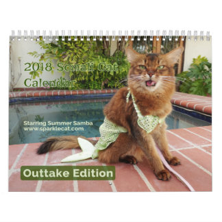 夏のサンバのカットシーンの版2018年を持つソマリ族猫、 カレンダー