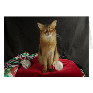 夏のサンバを特色にしている休日のソマリ族猫 カード