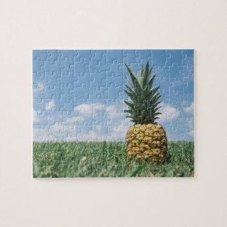 夏のパイナップル ジグソーパズル