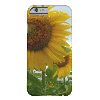夏のヒマワリの電話箱 BARELY THERE iPhone 6 ケース