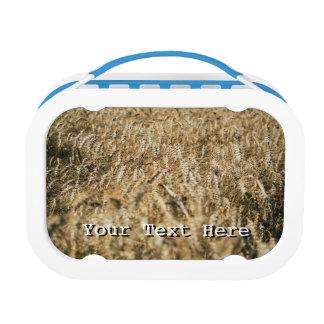 夏の小麦畑のクローズアップの農場の写真 ランチボックス
