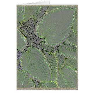 夏の庭のHostAの葉 カード