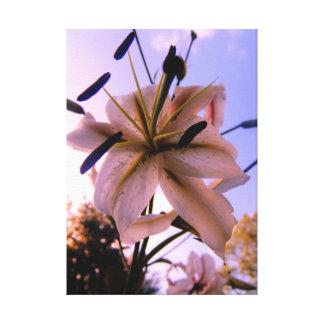 夏の日に対する素晴らしく美しいLilly キャンバスプリント