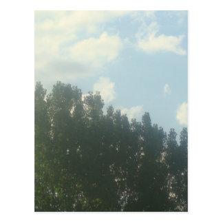 夏の日光 ポストカード